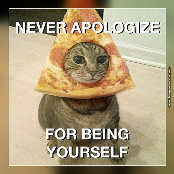 funny-pictures-never-apologize